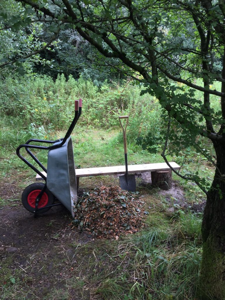 Tools and bench under tree